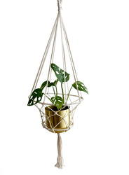 KNOTTED PLANT HOLDER