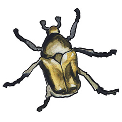 Patch beetle 75x110mm yellow 1pc