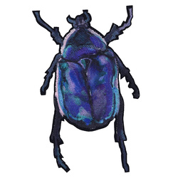 Patch beetle 94x56mm blue/purple 1pc