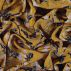 Woven viscose warm curry w flowers