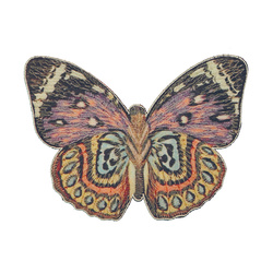 Patch butterfly 14x10,5cm mix col. 1pcs