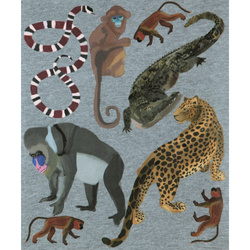 Heat tropical animals 24x30cm 1 sheet