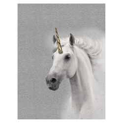 Jersey photo print appr. 50x70cm unicorn