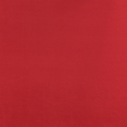 Polar fleece red