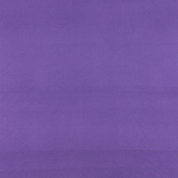 Micro fleece purple