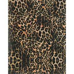 Heat transfer Leopard 24x30cm 1 sheet