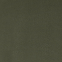 Cotton canvas dusty green